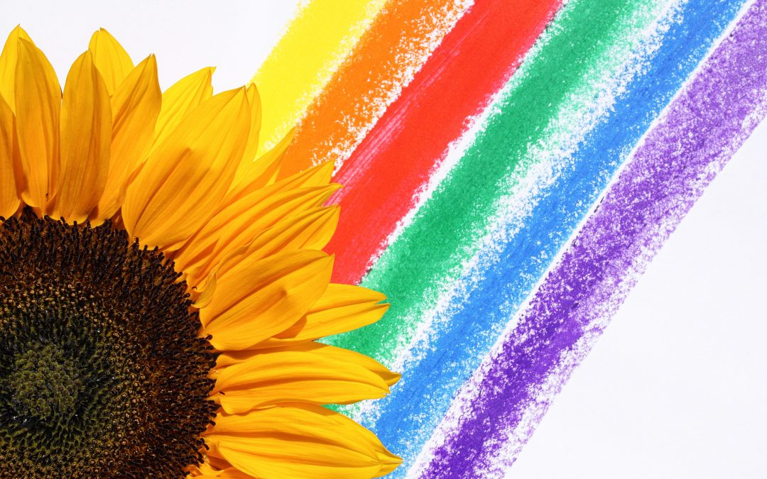 Be the sunflower in the life to the LGBTQ community